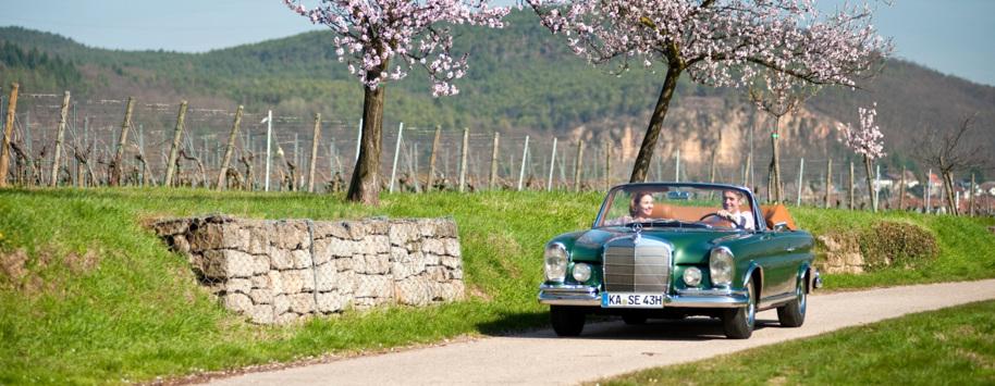 Oldtimer mieten Hochzeit Konstanz Bodensee