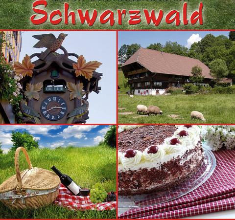 Oldtimer Vermietung Schwarzwald